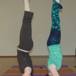 Yoga Workshops